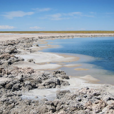 Chile 2012: Atacama Desert, Cejar Lagoon