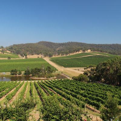 Asia/Australia 2013: Yarra Valley wine tasting