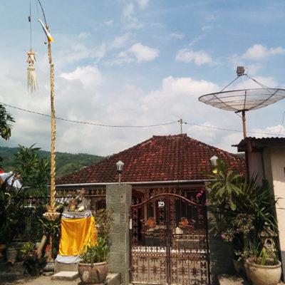Bali: Menjangan to Ubud