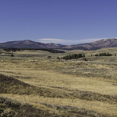 Wild West 2015: Yellowstone (Day 2)