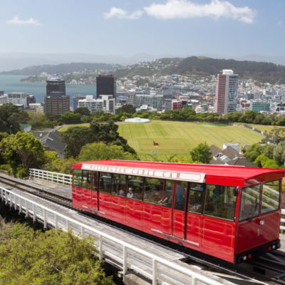 Wellington: botanical gardens & coastal views