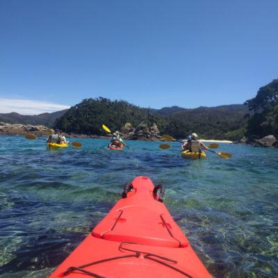 Nelson: kayak trip to Abel Tasman