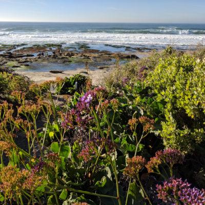 San Diego: sites