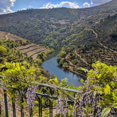 Portugal 2019: Douro daytrip