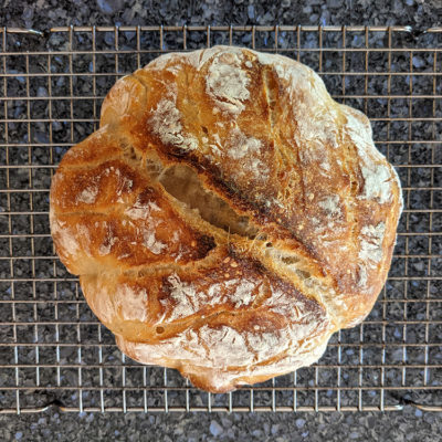 Making bread without yeast: a lesson in patience