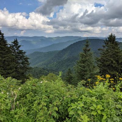 NC Mountains Summer 2021: Blue Ridge Parkway
